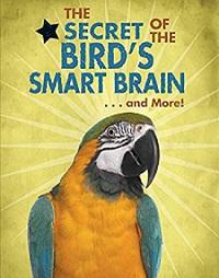 200pxBird_smart_brain